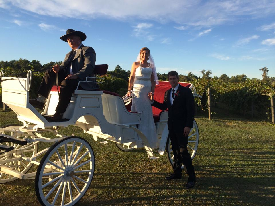 Carriage ride for bride and groom at Gregory Vineyards, Angier, NC.